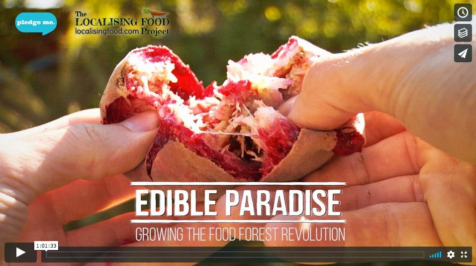 Edible Paradise - Growing the Food Forest Revolution - Community Screening License